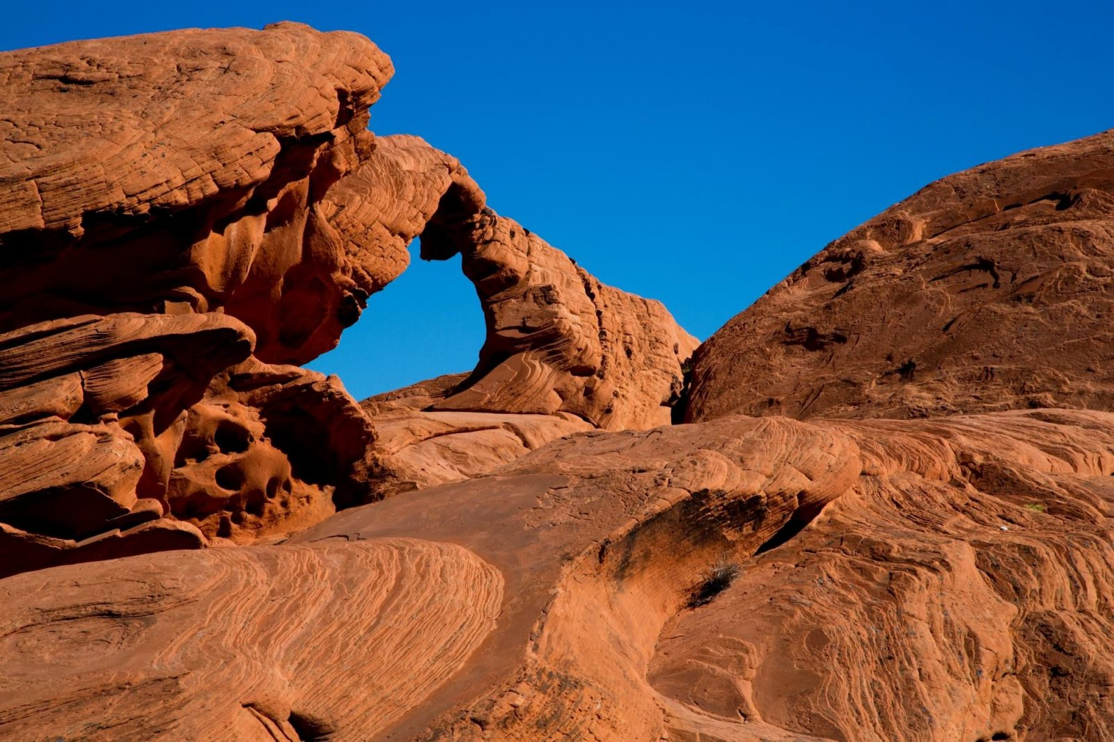 Red Rock Canyon near Las Vegas features stunning natural beauty